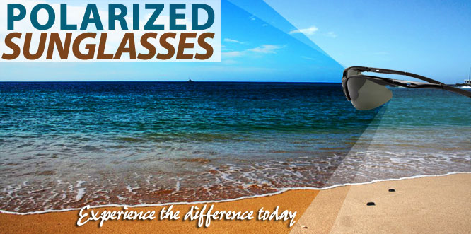 Wholesale Polarized Sunglasses