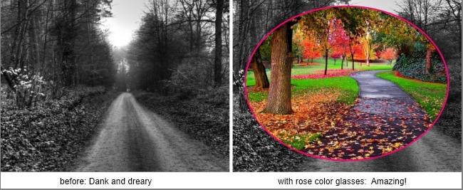 rosecolorglasses-amazing.jpg