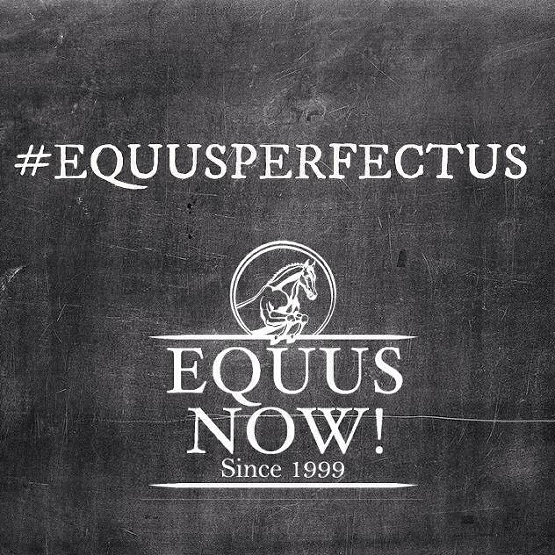 equusperfectus.1.convert.jpg