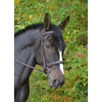 KL Select Black Oak Cyprus Hunter Bridle