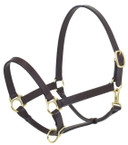 Camelot Stable Halter
