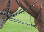 Shires German Martingale - Horse