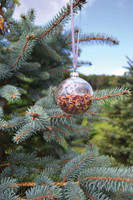 Christmas Tea Bauble - Red Berry