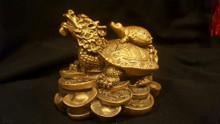 Treasure Dragon Tortoise