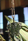 Gold-Wire Wrapped Moldavite