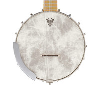 Gretsch G9460 Dixie 6 Guitar-Banjo - Banjitar