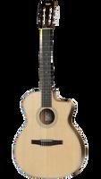 Taylor 214ce-N Nylon Acoustic Guitar w/ Hard Gig Bag