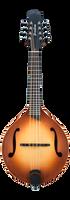Breedlove Premier OF Mandolin w/Case