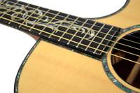 Taylor PS14CE Acoustic Guitar