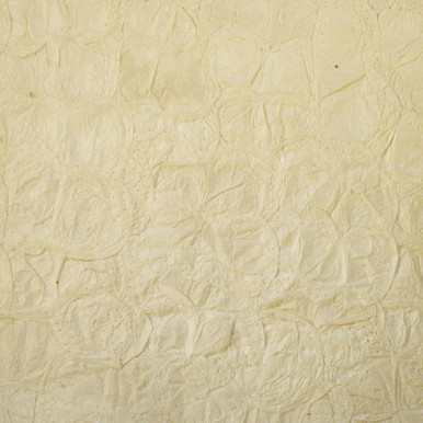 #22-013 Bombyx Cocoon Paper by Sanjo Silk
