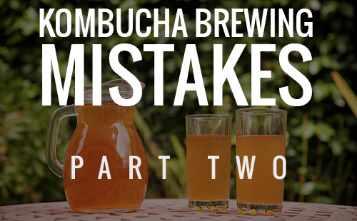 Kombucha Brewing Mistakes