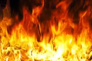 """""""Wondrous Wicks"""" Fireside -  4 OZ - Burns 20-25 Hours!"""