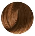 Clairol Soy 4Plex Liquicolor 8NN Light Neutral Blonde