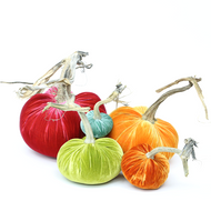 NEW - Velvet Pumpkin Large Set - Sorbet
