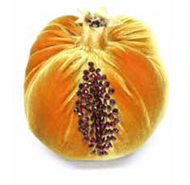 Velvet Pomegranate - D'or