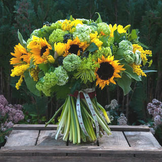 sunflowers, shamrock, guelder, mimosa, yellow freesia and ranunculus