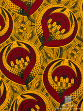 Vlisco Dutch Wax W1017
