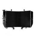 http://www.areyourshop.com/AMZ/MotoPart/Radiator%20Grille/M504-A071/M504-A071-Black-1.jpg