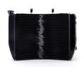 http://www.madhornets.store/AMZ/MotoPart/Radiator%20Grille/M504-A044/M504-A044-Black-1.jpg