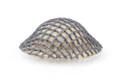 BrickArms Brodie Helmet w/ Fabric Mesh