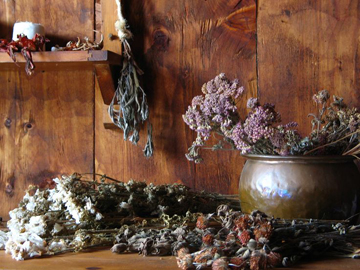 magic-herbs-organic-herbs-witchcraft-spells.jpg