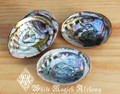 Abalone Shell Smudge Vessel Small