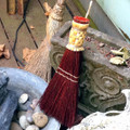 Whisk Broom Rust