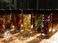 Alchemist Tree Mini Spell Oils with All Organic Herbs, Flowers, Woods, Resins, Crystals and Essential Oils