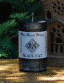 BLACK CAT Spell Candle . Reverse Bad Luck, Bring Good Luck in Business and Money, Protection