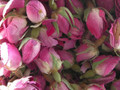 Pink Rose Buds ~ Herbal Alchemy
