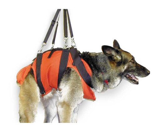 R-N-R Dog Harness