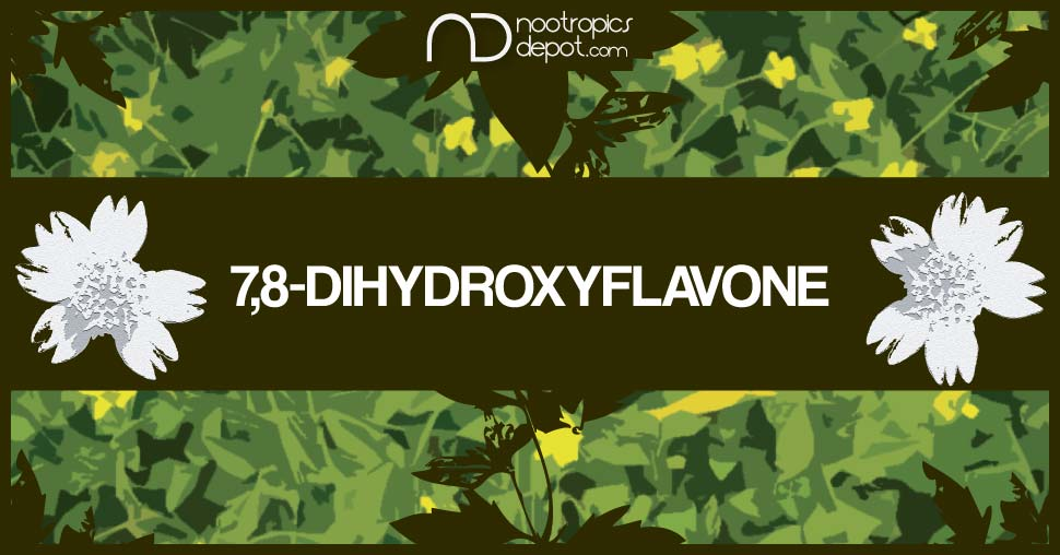 7,8-Dihydroxyflavone: A Brain Health Supplement That May Support Neuroplasticity