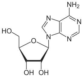 Andenosine Structure