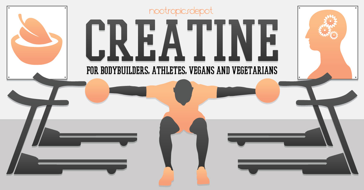 Creatine - A Nootropic Supplement for Bodybuilders, Athletes, Vegans, and Vegetarians
