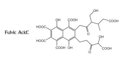 Fulvic Acid Diagram
