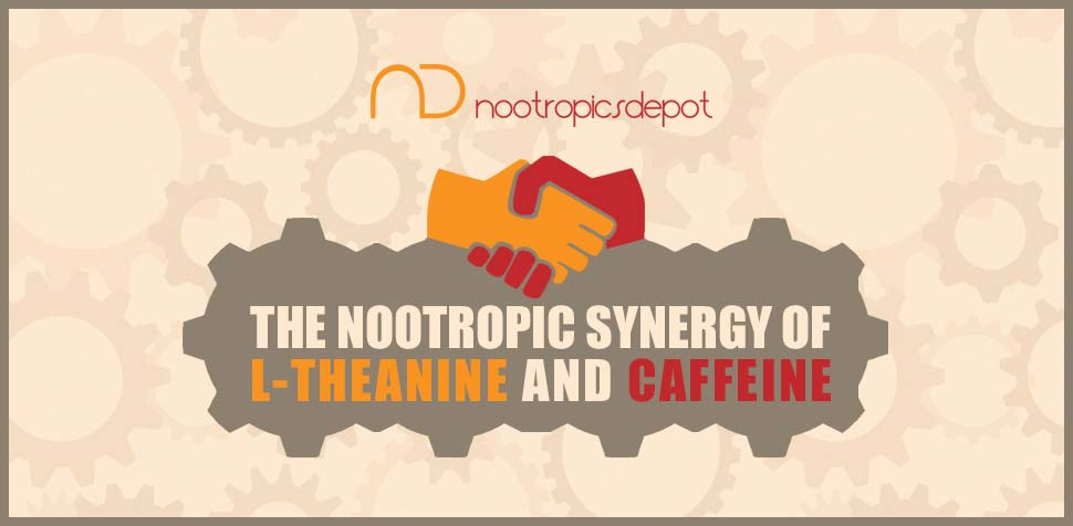 The Nootropic Synergy of L-Theanine and Caffeine