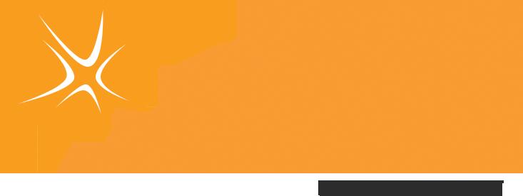 PrimaVie Purified Shilajit