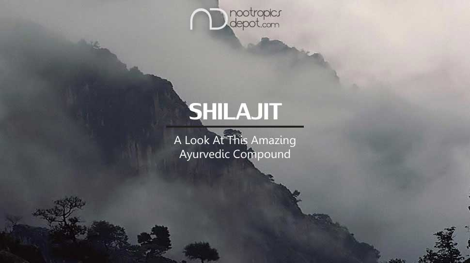 Shilajit - A Look at this Amazing Ayurvedic Compound