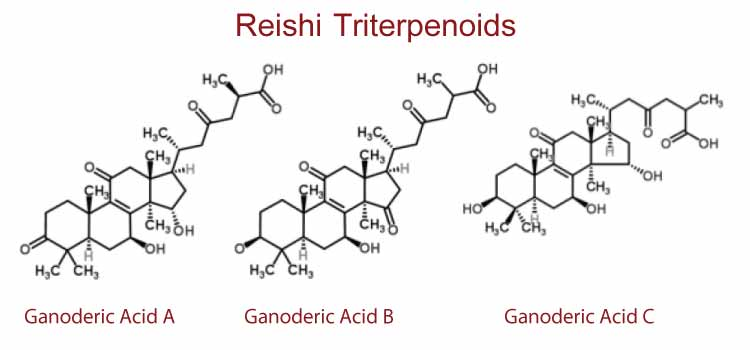 Red Reishi Triterpenoids