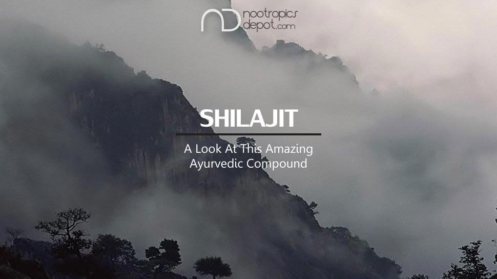 Shilajit - An Ayurvedic Supplement