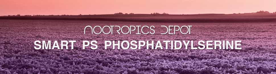 Buy Phosphatidylserine Softgels