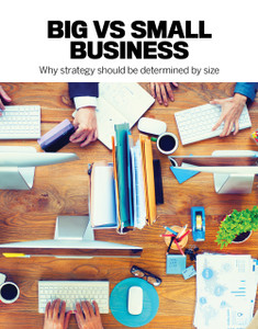 Big vs Small business (available for immediate download)