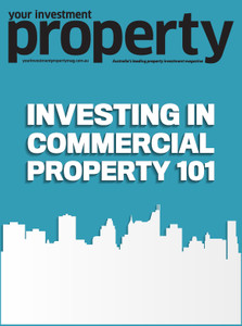 Investing in Commercial property 101 (soft copy only)
