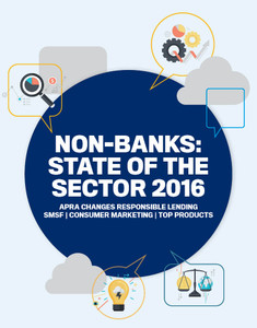 NON-BANKS: STATE OF THE SECTOR 2016 (soft copy only)