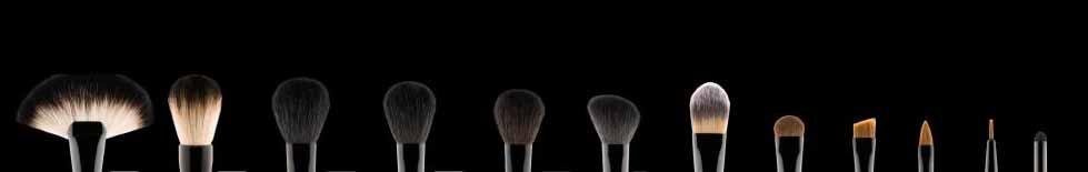 web-brushes.jpg