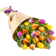 Mixed colors tulips arranged hand tied for delivery anywhere in Sweden.