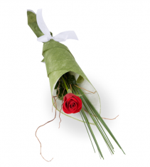 Single red rose for delivery anywhere in Sweden.