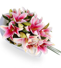 Oriental lilies Sweden shipping.