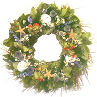 Gulf Shore Seashell Wreath - 22 in