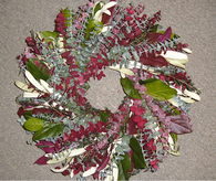 Mulberry Lane Eucalyptus Wreath - 24 inch